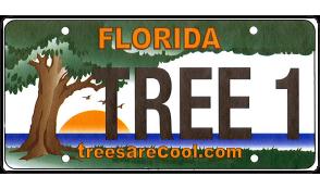 Florida TreesAreCool.com