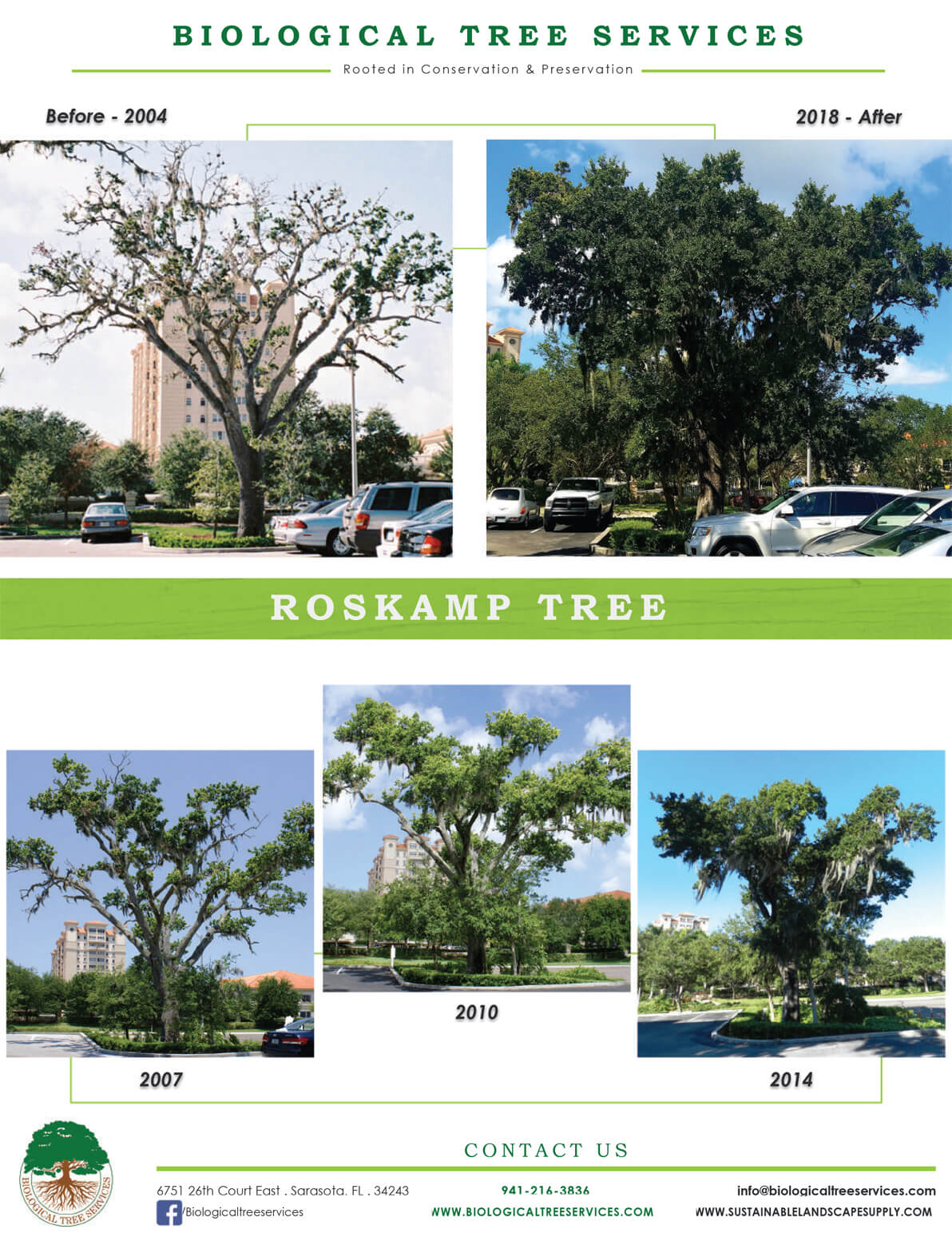 The Roskamp Tree